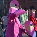 DSC_0645_parade_birds_577 copy