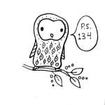 Cute Owl on a Twig