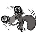 flip_bike_squirrel_72