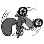 flip_bike_squirrel_72_flipped