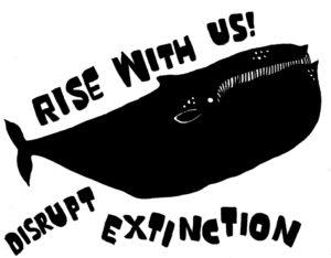 EXR_whale_72