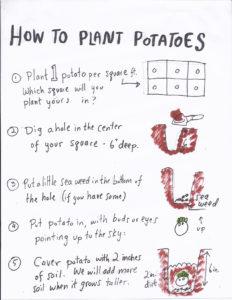 EBGC2017_4_how_to_plant_potatoes copy