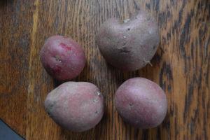 Potatoes_100